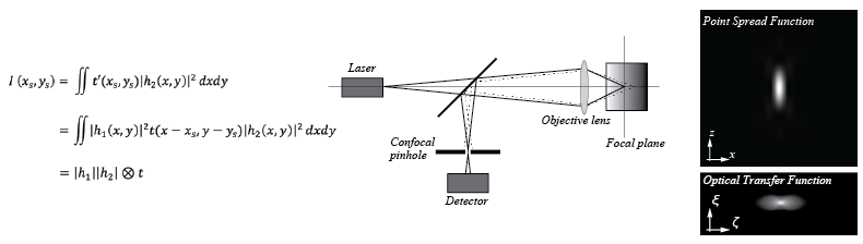 """Theory of Scanning Laser Miscroscopy"""